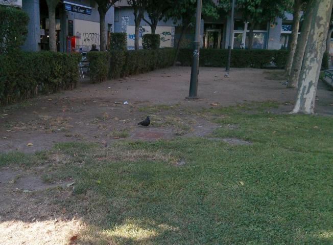 El psoe municipal denuncia for Los jardines esquelas