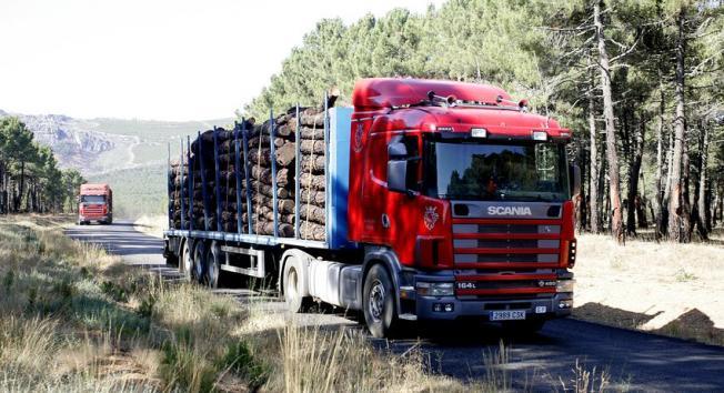 Camiones transportando madera quemada del incendio del pasado año de Castrocontrigo. (Foto: Campillo)